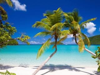 St. John's North Shore has unparalleled beaches