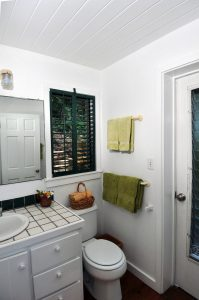 Bathroom with door to shower garden