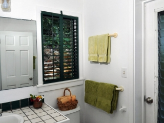 Bathroom with door to shower garden