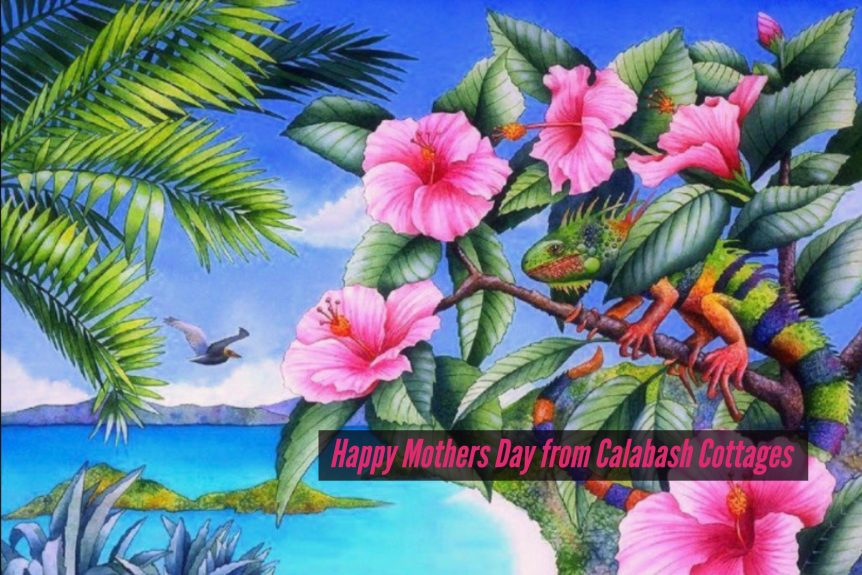 St John Virgin Islands Mothers Day