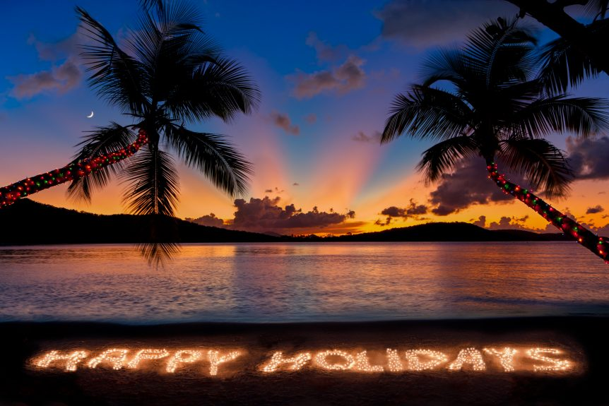 happy holidays palm trees