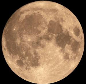 Full Moon Dinner @ VI Lucky Chops